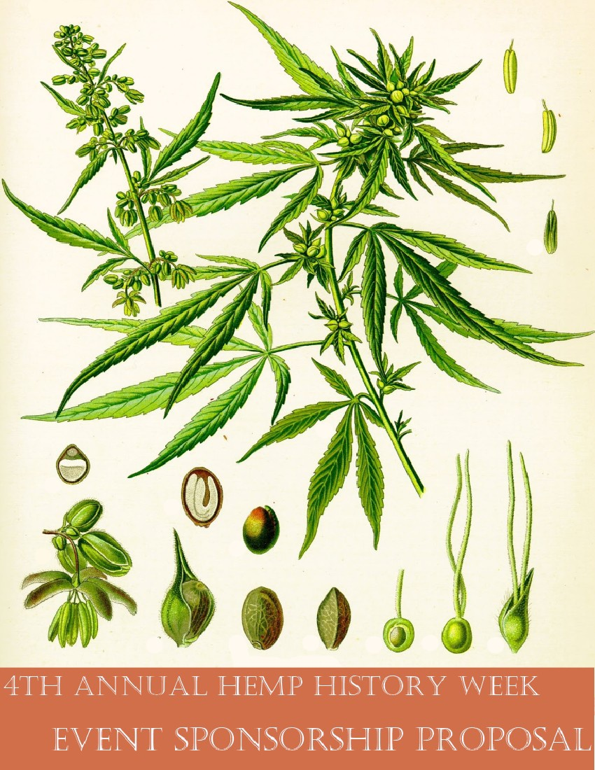 a research on hemp or cannabis sativa Hemp oil and cannabis oil are made from the same plant, which is cannabis sativa (also known as hemp) however, this one plant has many different the concentration of cbd cannabinoids is lower but the health effects have not been extensively researched yet as you can see, it is quite easy to.