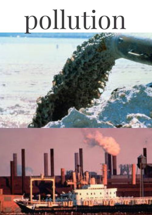 the global issue of pollution and its solutions Get free research paper on environmental pollution in nigeria: issues and solution project topics and materials in nigeria there is need for government to enact and implement necessary environmental laws to control the issues of environmental pollution and this can be done by putting necessary.