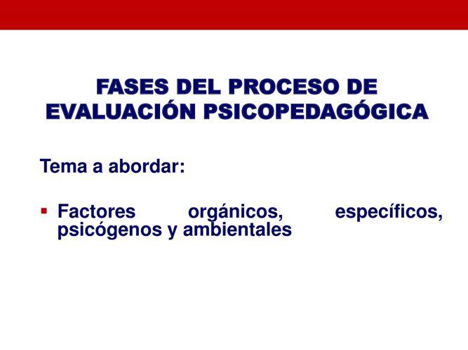 TEMA 2.1 PDF