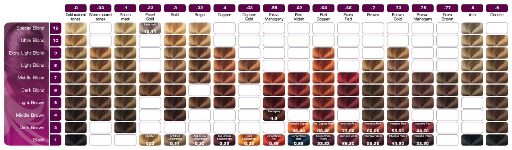 Biowomanchart by gbrayong flipsnack berrywell color chart published on feb 28 nvjuhfo Gallery